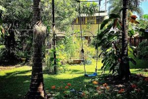 giardino-tropicale